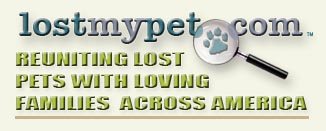 Lost My Pet - Reuniting lost pets with loving families.